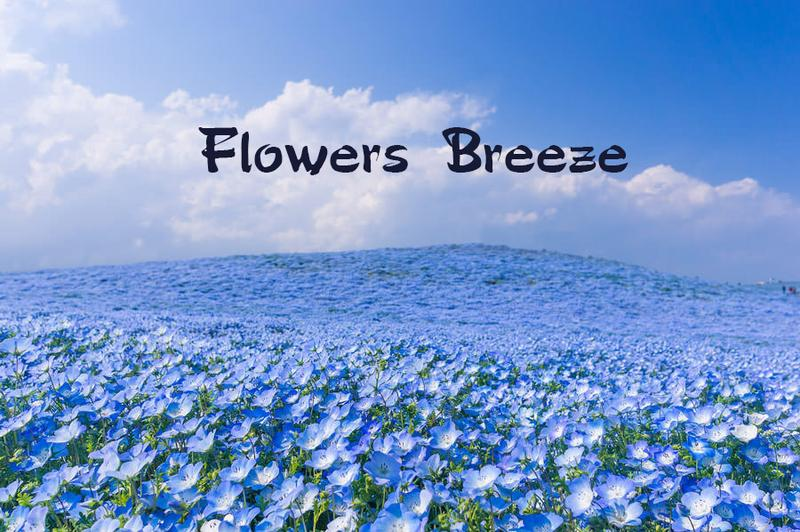 Flowers Breeze