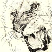 lionking77