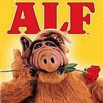 Alf71