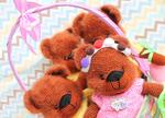 Woolya Bears