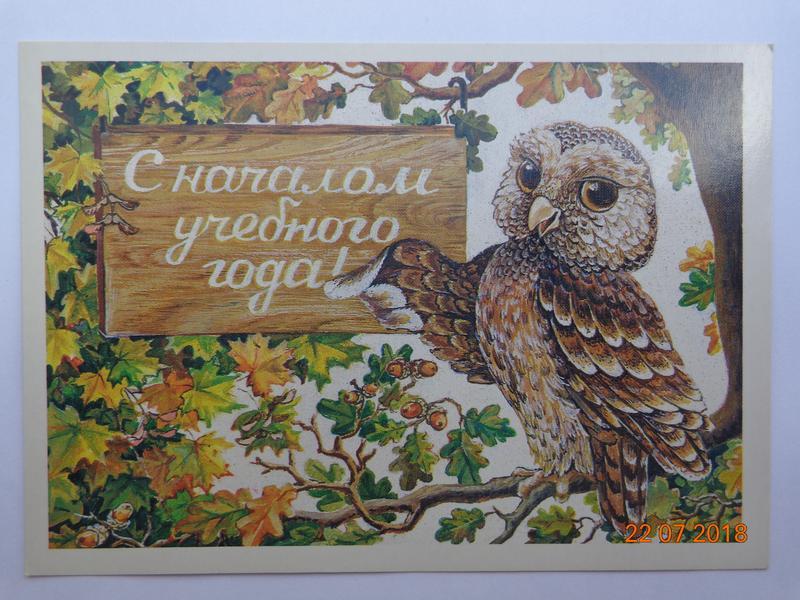 открытки царской россии с началом учебного года