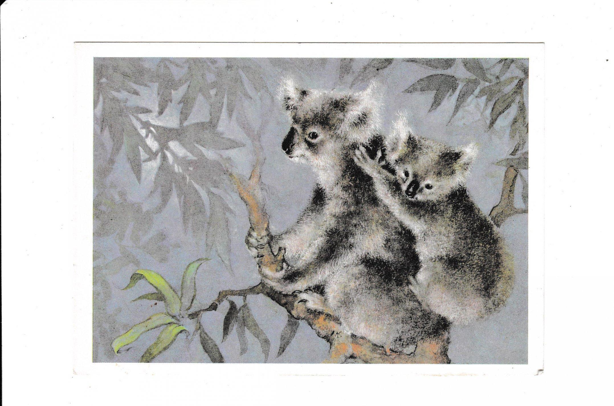 Коала открытка, разное картинках