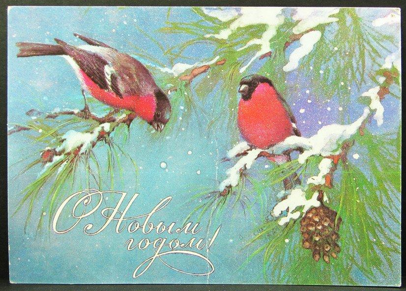 Новогодняя открытка с снегирями, днем