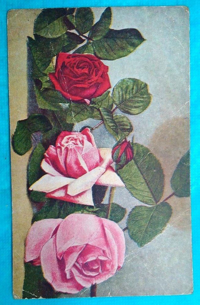 Открытки из звездных роз, картинки
