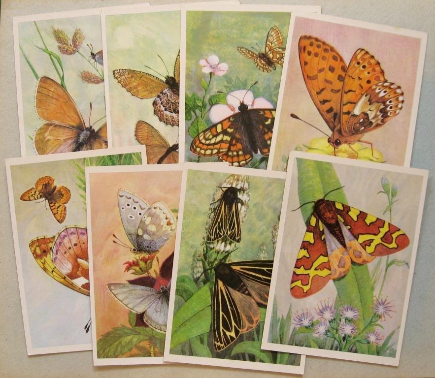 Марта смешные, куплю открытки с бабочками