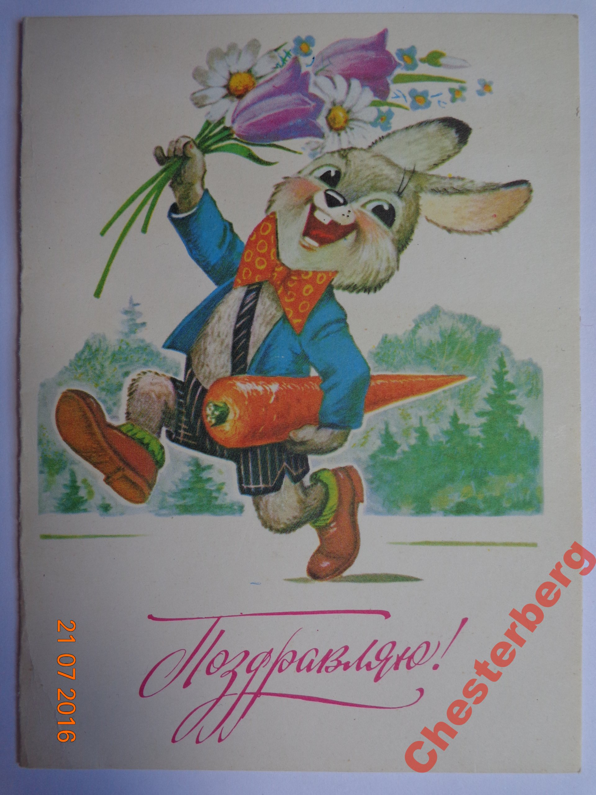 Открытки день рождение морковка