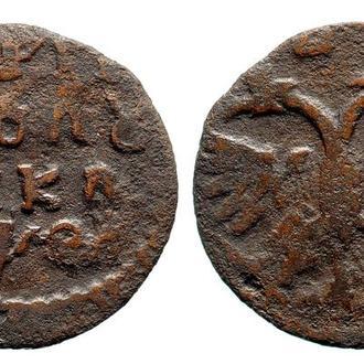 Полушка 1719 года №4433