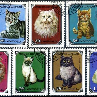 Монголия. Коты (серия) 1979 г.