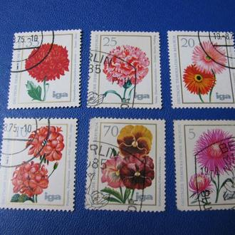 Флора Квіти Цветы Німеччина Германия