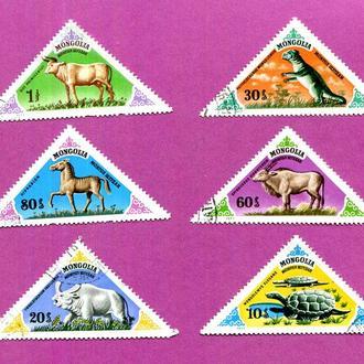 Монголия  Фауна Динозавр