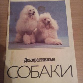 Книга Декоративные собаки.