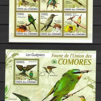 Коморы 2009 ** Фауна Птицы Пчелоеды БЛ+МЛ MNH