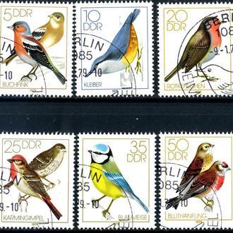 ГДР. Птицы (серия) 1979 г.