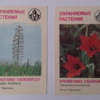 Календарик. Красная книга Узбекской ССР. 1987 г.