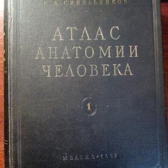 АТЛАС АНАТОМИИ ЧЕЛОВЕКА Синельников Р.Д. (В ДВУХ ТОМАХ)