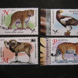 фауна кошки тигры беларусь на т