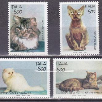 Италия Domestic Cats MNH 1993