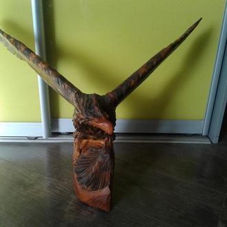Орел дерево большой