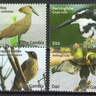 Гамбия 2009 ** Фауна Птицы серия MNH