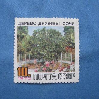 СССР 1970 Дерево дружбы Сочи
