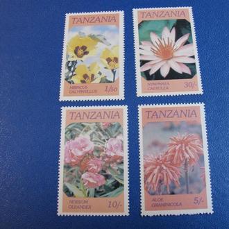 Флора Квіти Цветы Танзанія Танзания