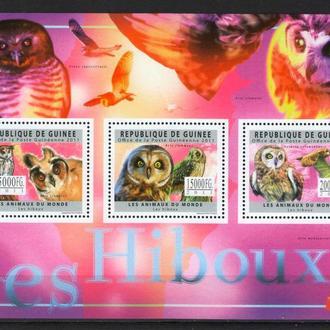 Гвинея 2011 ** Фауна Птицы Совы 18-00 евро БЛ MNH
