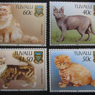 фауна кошки тувалу  на т