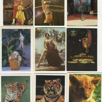 Карманные календарики Цирк 9 шт. (№20)
