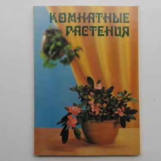 Открытки Комнатные растения. Набор из 25шт. СССР 1983г.