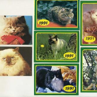 Карманные календарики Животные Кошки 7 шт. (№2)