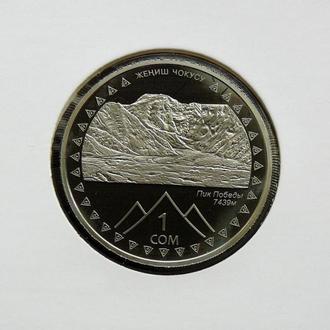 Киргизия 1 сом 2011 г., PROOF, '20 лет независимости - Пик Победы'