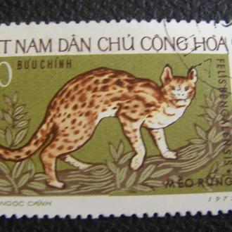 Вьетнам 1972