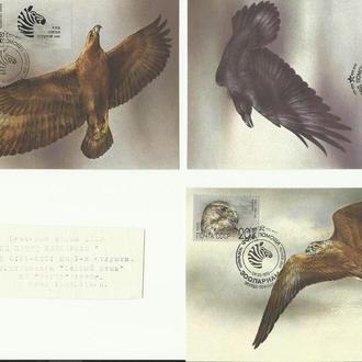 "Конверт КПД ""Фонд помощи зоопаркам"" 1991г."