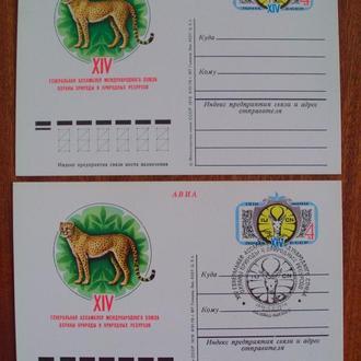 КОМ. СССР. 1978г. Фауна. Тигр. Охрана природы. Спецгашение: Ашхабад.