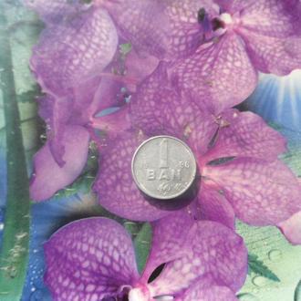 Молдова 1бан 1996г