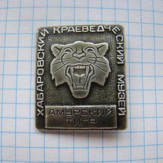 Хабаровск Краеведческий музей Амурский тигр.