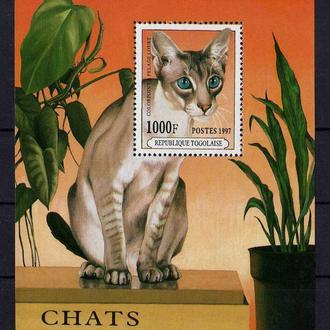 Того Фауна Домашние животные Кошки Чистый Редкий Блок