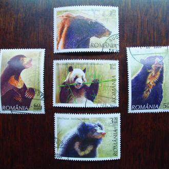 Румыния.2008г. Фауна. Медведи. Полная серия.