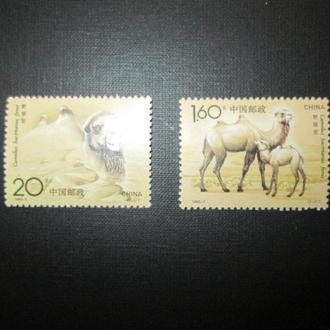 Китай,  MNH,   Верблюды