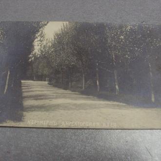 открытка кеммерн директорская алея №1435