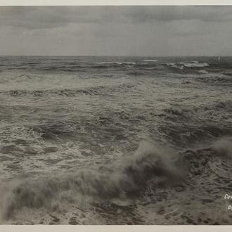 Открытка. Сочи, 1949 г. (118)