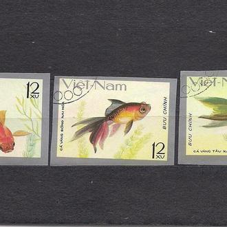 Вьетнам, 1977 г., фауна, золотые рыбки