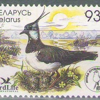 Беларусь 2006 чибис
