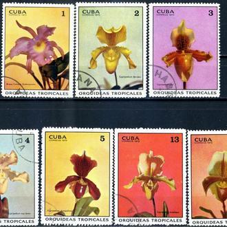Куба. Цветы (серия) 1972 г.
