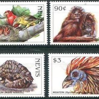фауна Невис-1998 редкие животные