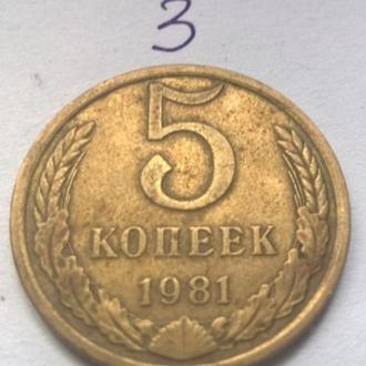 5 копеек 1981 год