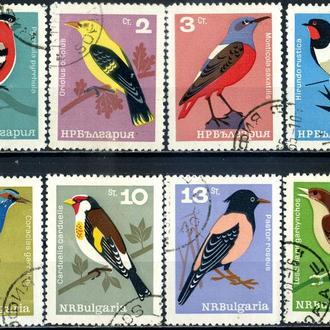 Болгария. Птицы (серия) 1965 г.