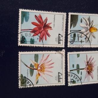 Марки Цветы Куба 1979