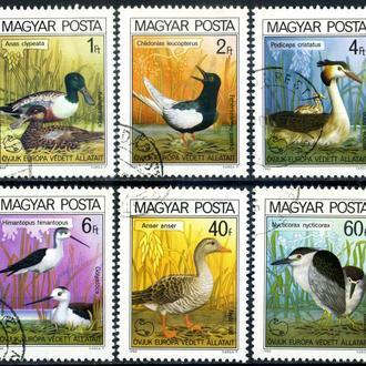 Венгрия. Птицы (серия) 1980 г.