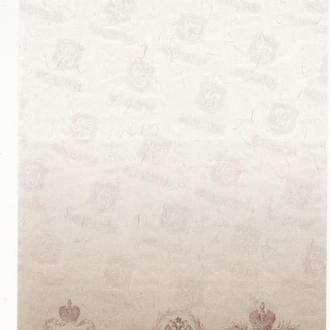 25 рублей 1909 акциз, вод. знаки Гознак 160х82 мм с уф-волокнами. Современный выпуск